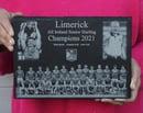 Image 2 of Limerick All Ireland Hurling Champions 2021