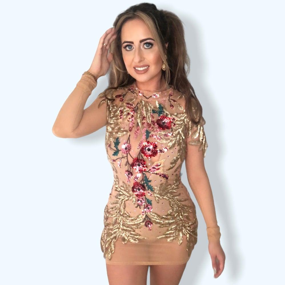 Image of Floral embellished mesh dress