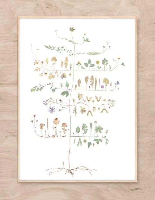 Image of Ingrids Tree NEW!