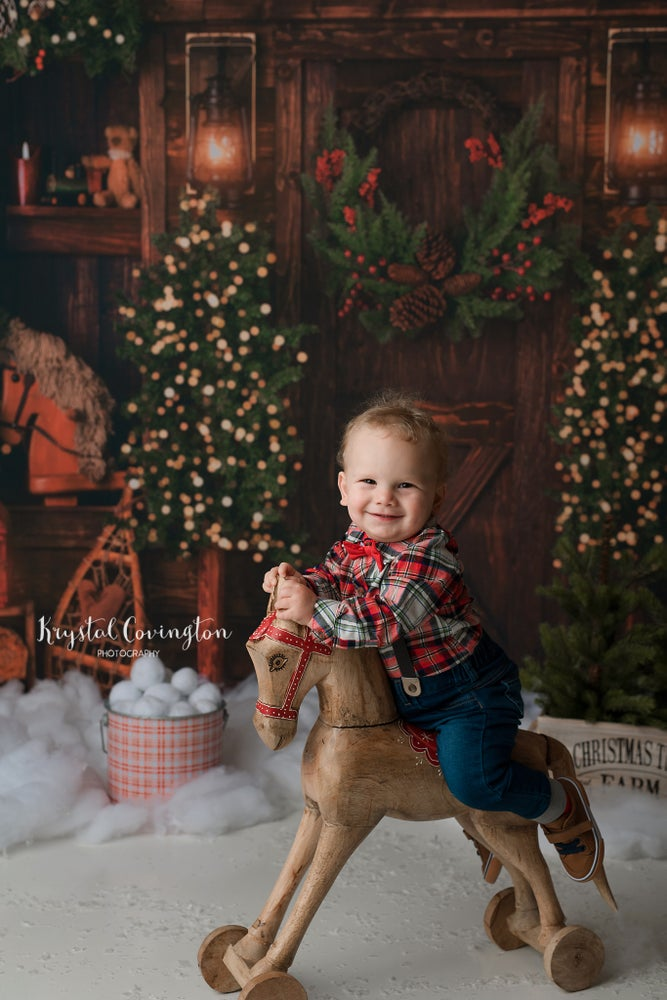 Image of 2021 Indoor Christmas Mini Sessions! November 13.
