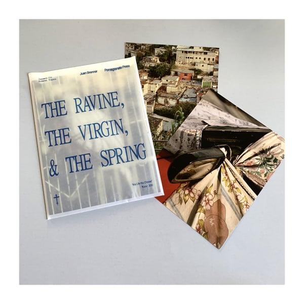 Image of Juan Brenner's The Ravine, The Virgin, & The Spring