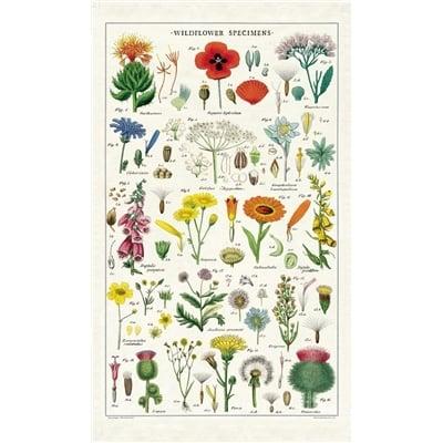 Image of Wildflowers Print Cotton Tea Towel - Cavallini Collection