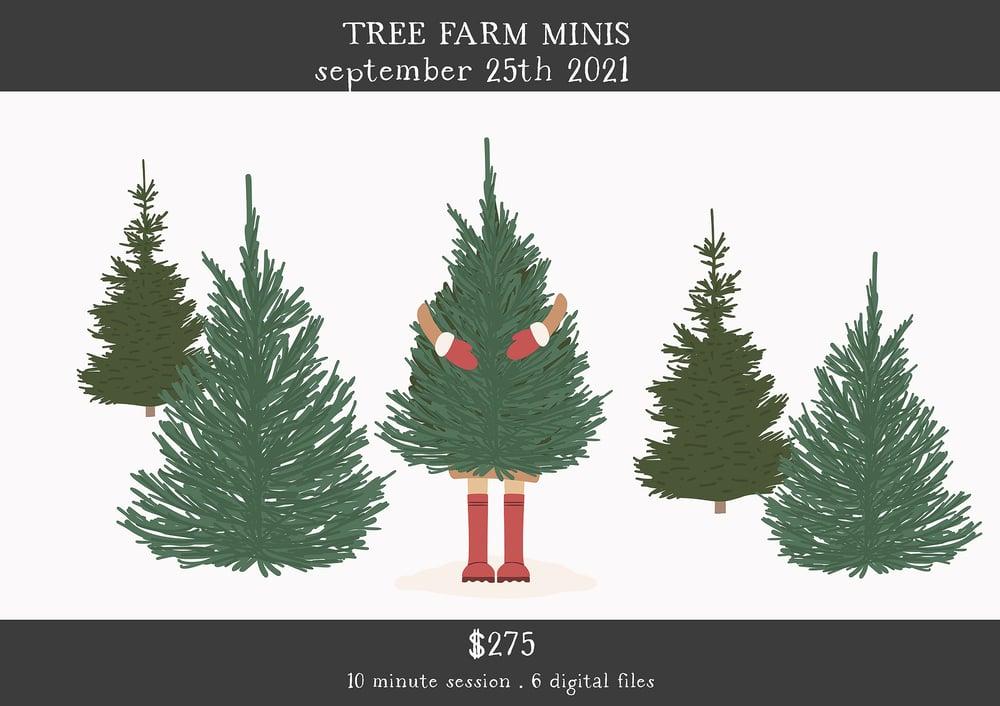 Image of Tree Farm Minis