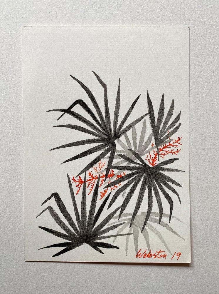Image of Palm Study II