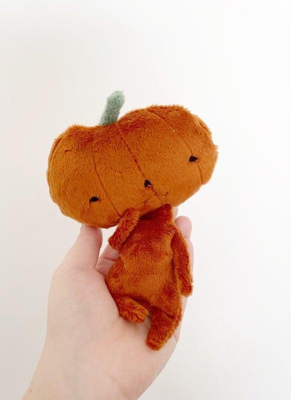 Image of Tiny Mystery Pumpkin