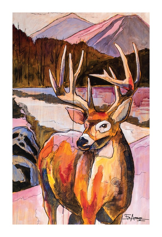 Image of Whitetail Deer - BHA Limited Edition Series