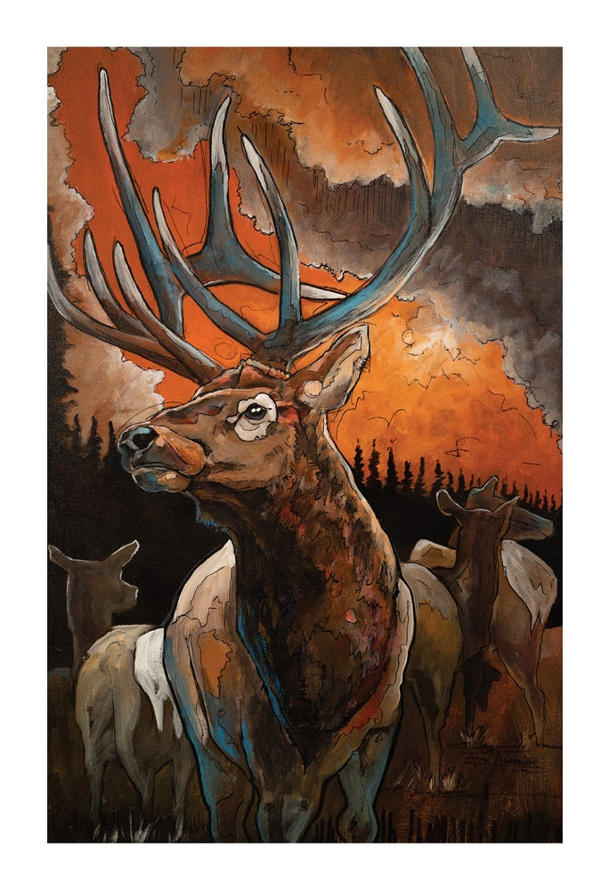 Image of Elk - BHA Limited Edition Series