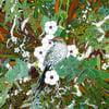 'Fernbird and Wetland Ecosystem' Print