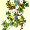 'Gecko and Alpine Ecosystem II' Print