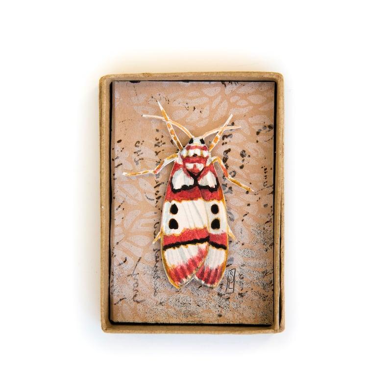 "Image of Papillon - ""Lichen Moth Cyana"" -  7 x 10 cm"