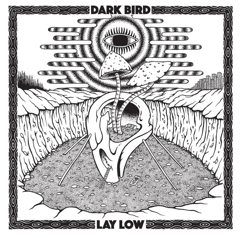 Dark Bird - Lay Low / In A Mily Way - 2xCDr Gatefold Edition Sam Giles. Cardinal Fuzz