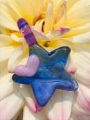 Image of Star gazer blue 💙🌟