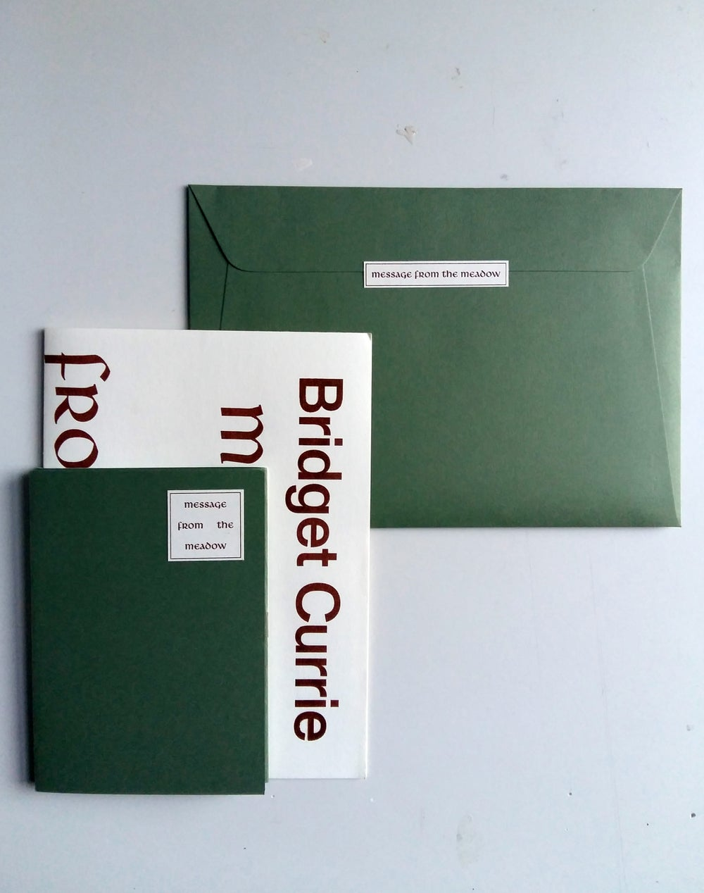 Image of Bridget Currie: Message from the meadow artist book