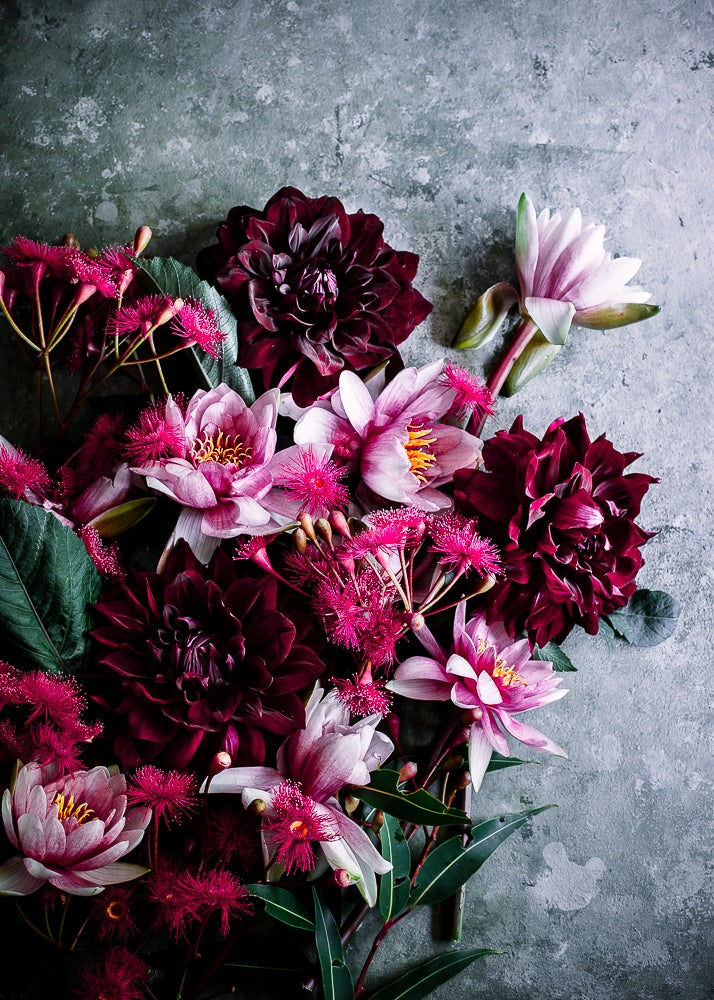 Image of Dahlias — Limited Edition Canvas Print