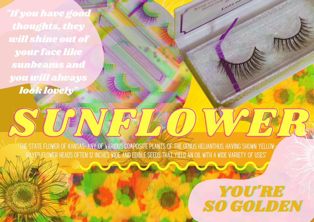 Image of Sunflower Lash