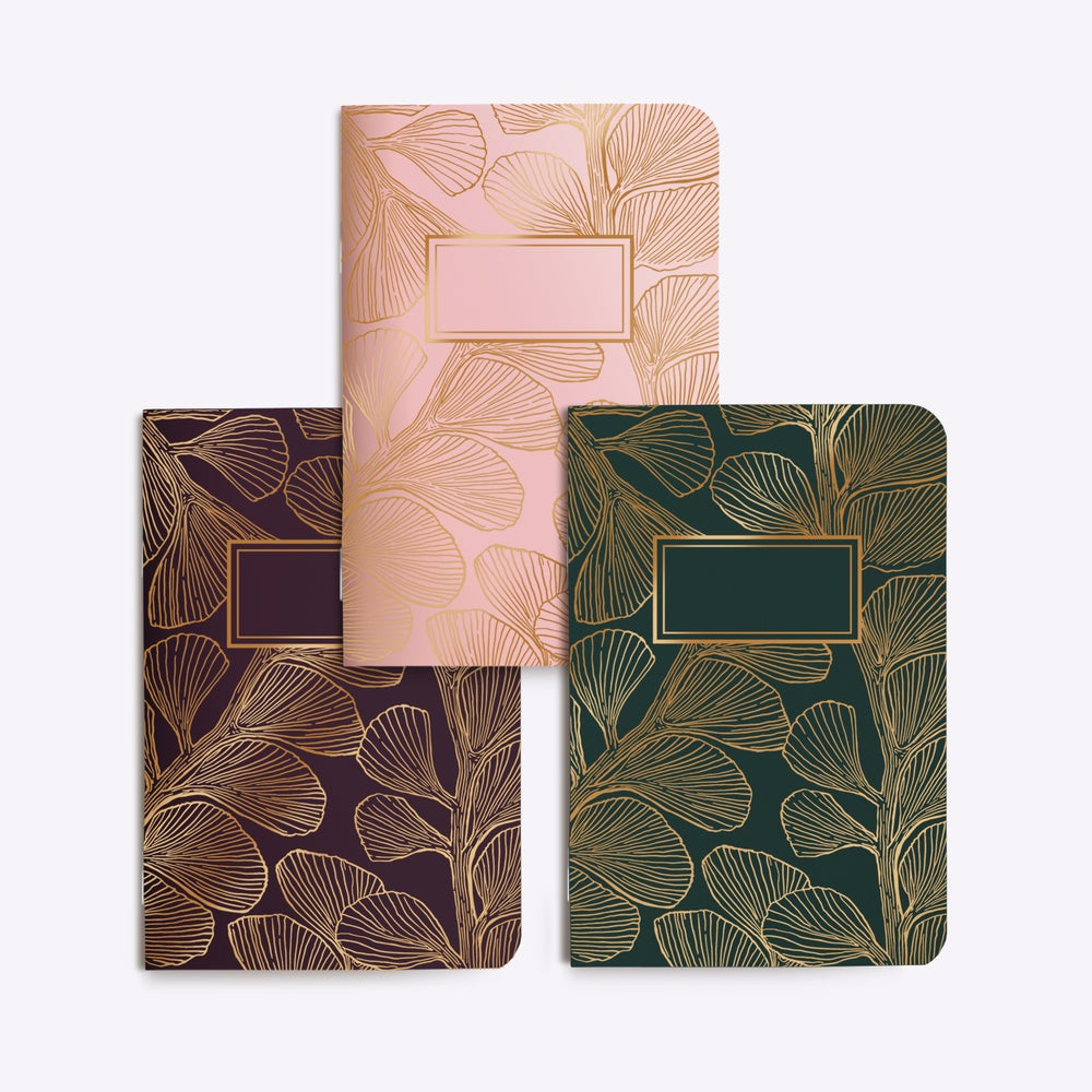 Image of TRIO PETITS CARNETS CORAL