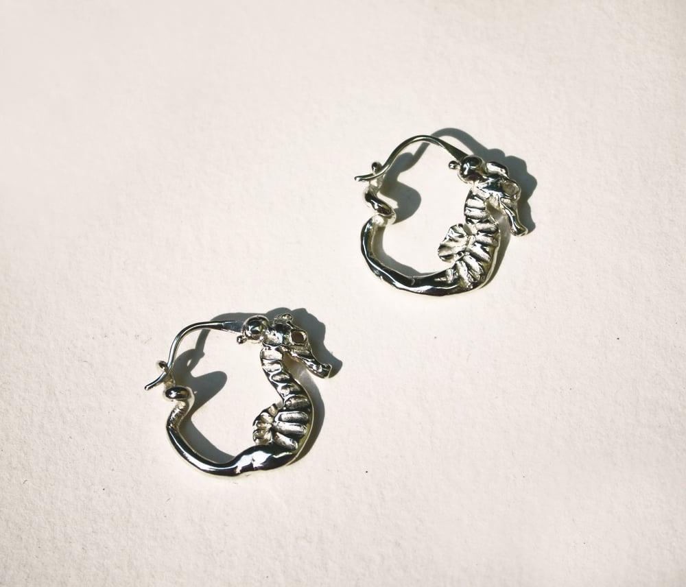 Image of Seahorse Hoops
