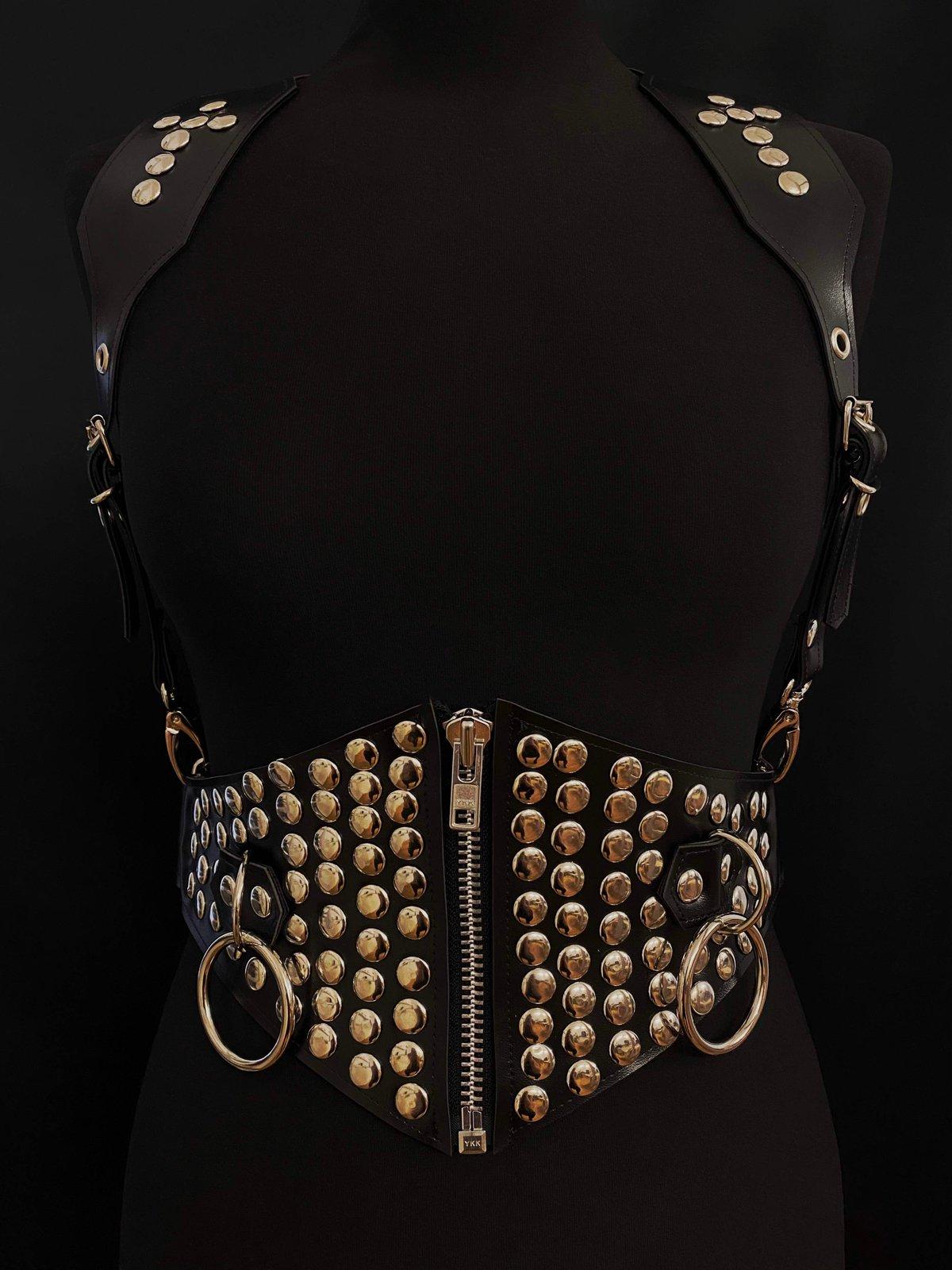 Studded waist cincher harness