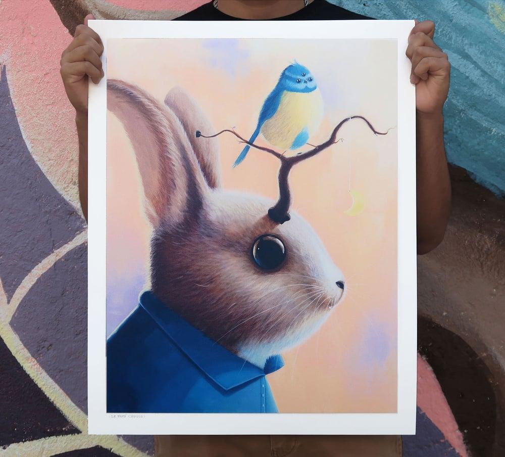 Image of Saulito el conejo
