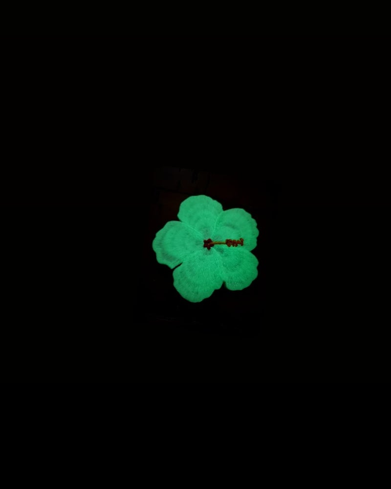 Image of White glow-in-the-dark hibiscus
