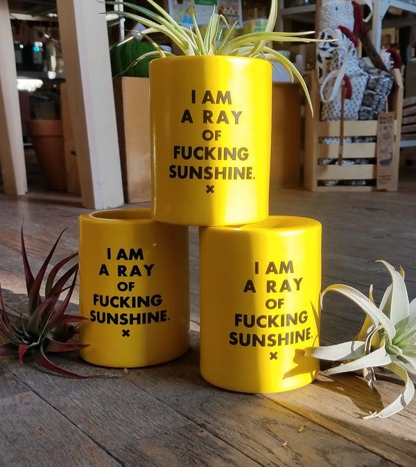 Image of I am a Ray Of Sunshine Koozie