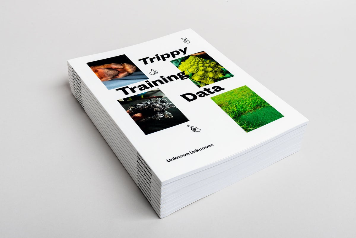 Image of Trippy Training Data