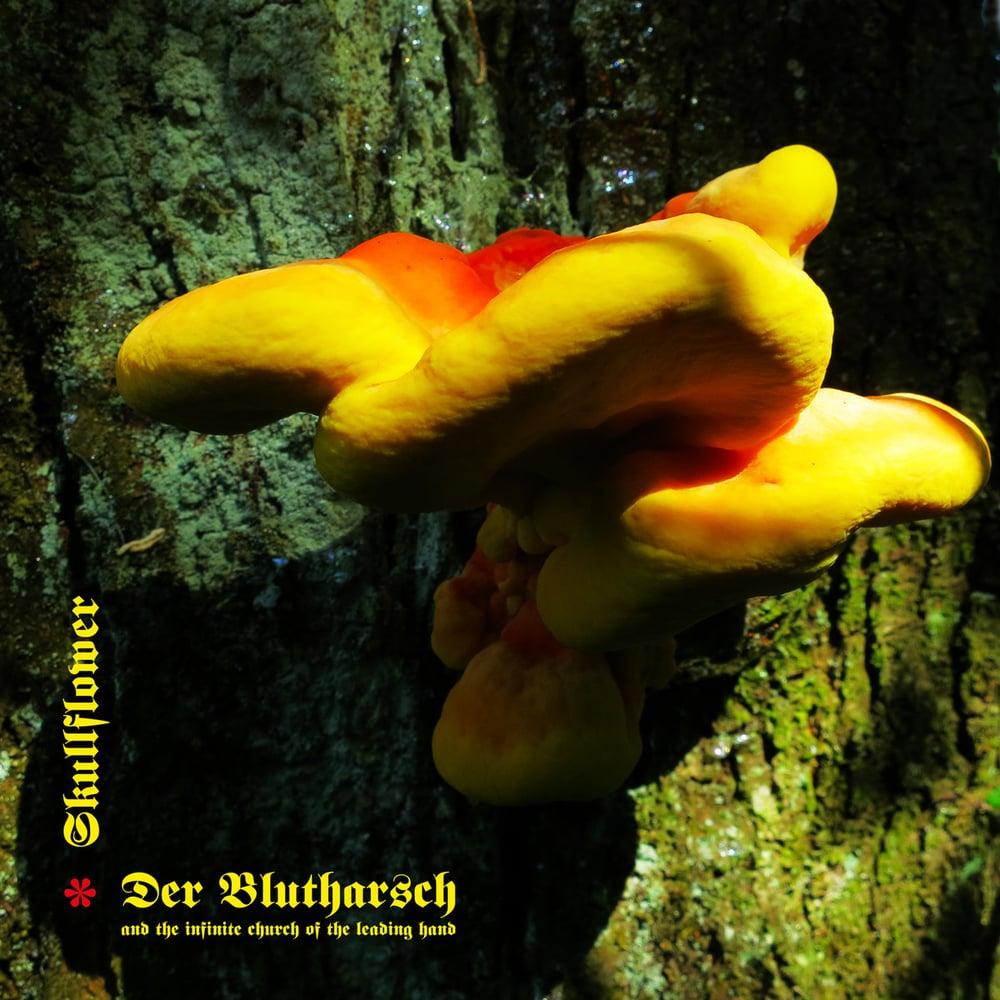 DER BLUTHARSCH & SKULLFLOWER - Angel of Darkness / VINYL LP (ltd. 150)