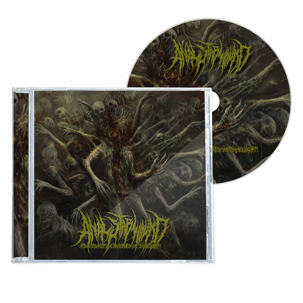 """Image of ANAL STABWOUND """"ABSTRACTION BATHES IN SUNLIGHT"""" CD"""