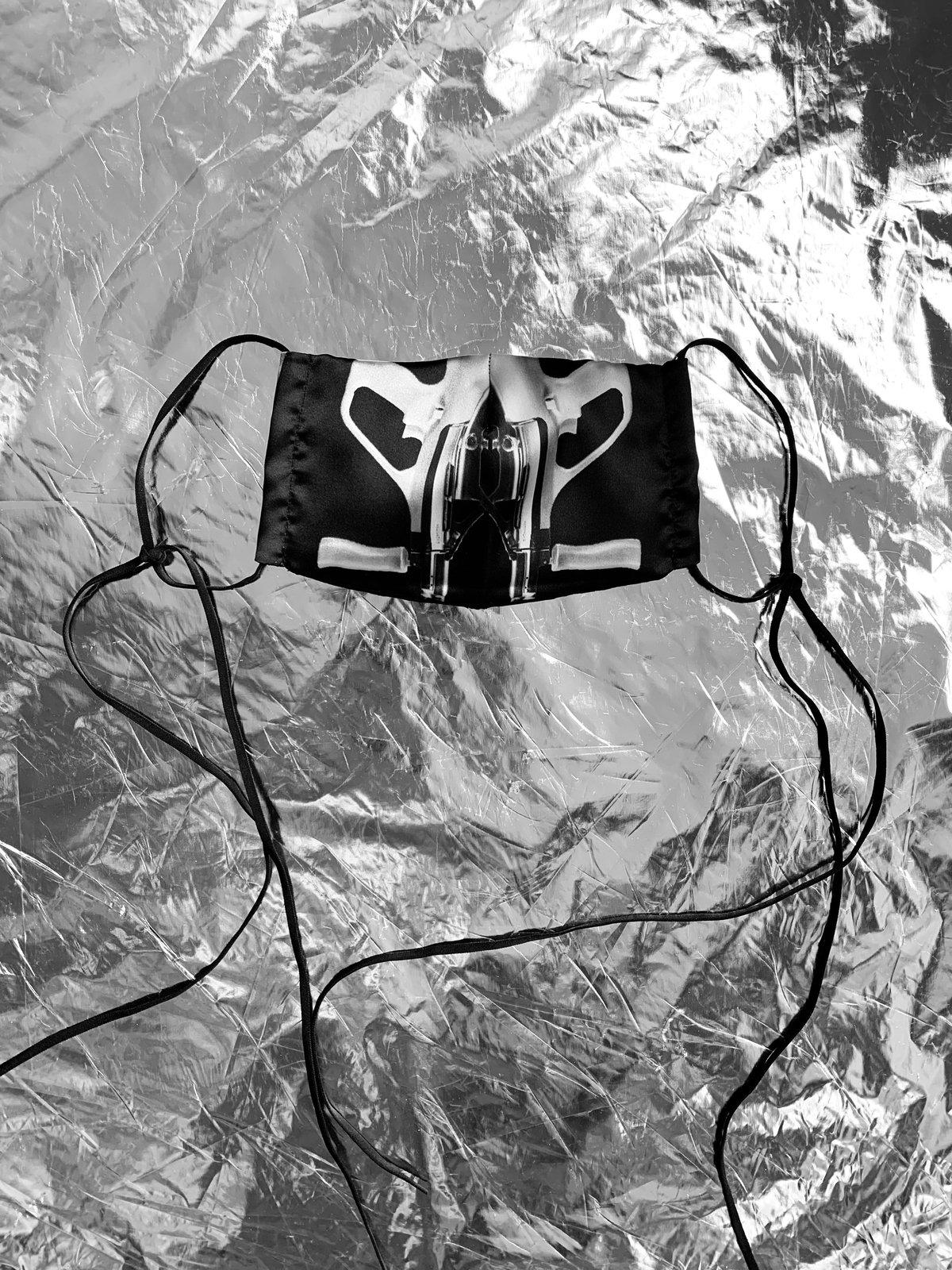 Image of TERROR VISION - Steyr Aug mask