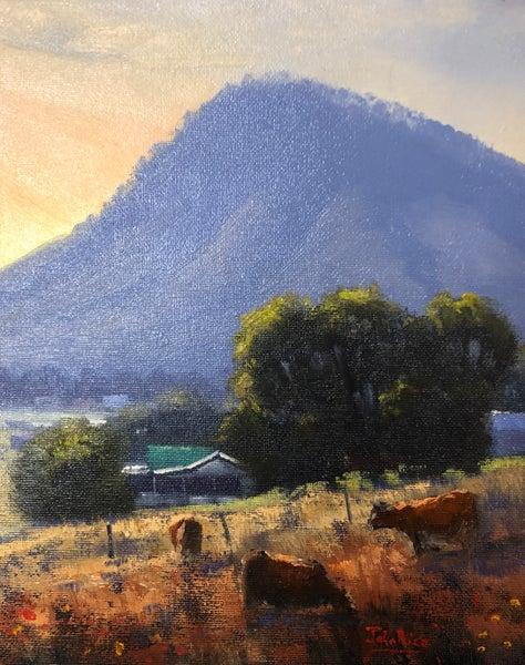 Image of Farm At Mt Frome