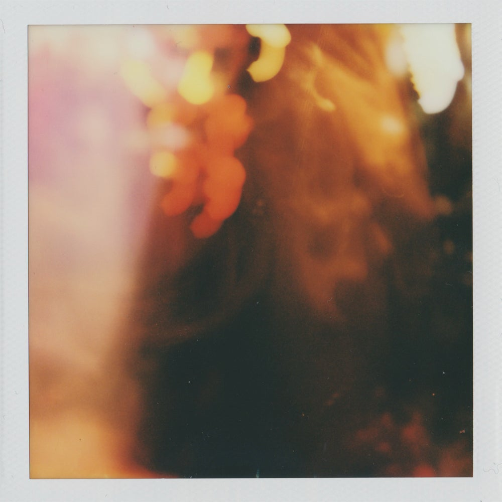 Image of Polaroid Michael Walrond #7