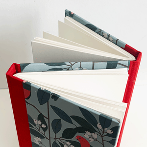 Image of Dos-à-Dos Binding -online - 19th November (7 - 9.15pm)