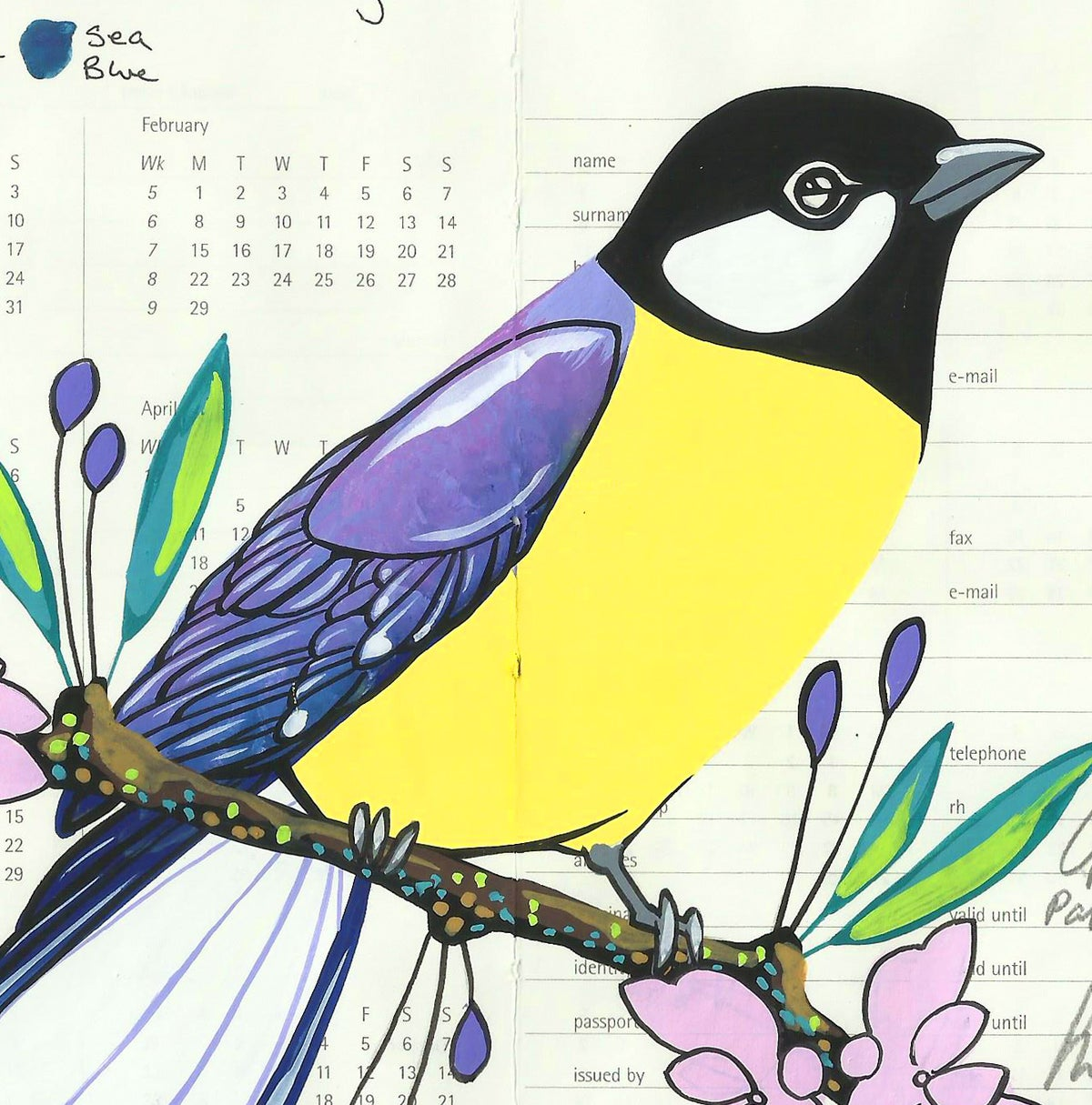 Image of Great Tit