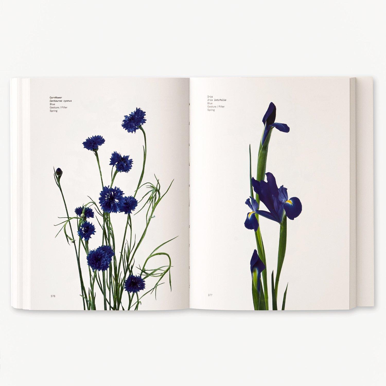 Image of Flower Color Guide by Putnam and Putnam