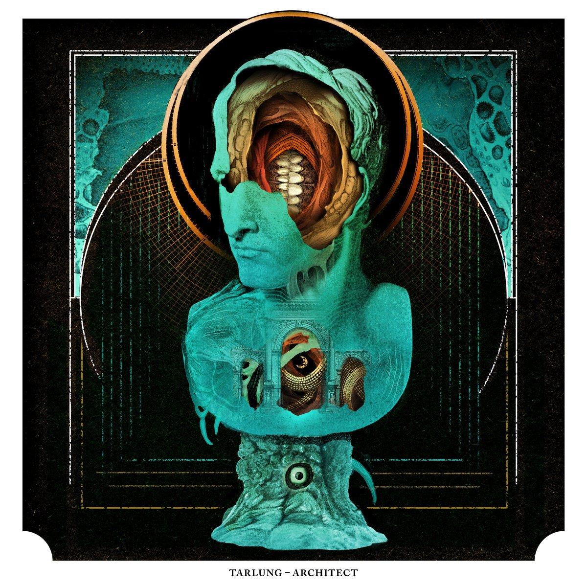 Image of Tarlung - Architect  - transparent vinyl LP