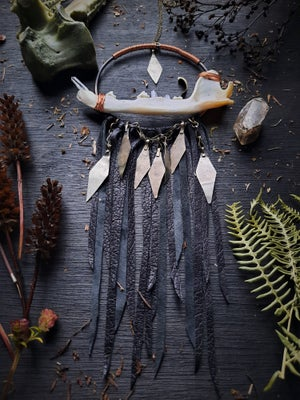 Image of Coyote Jaw with Crystal Teeth and Leather Fringe Necklace