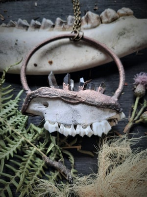 Image of Partial Deer Jaw with Smokey Quartz Necklace