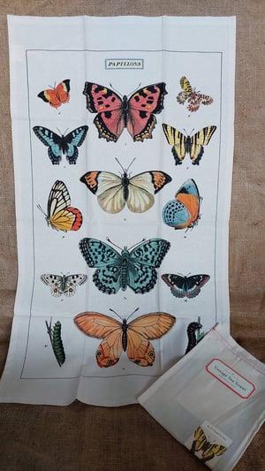 Image of Butterflies Print Cotton Tea Towel - Cavallini Collection