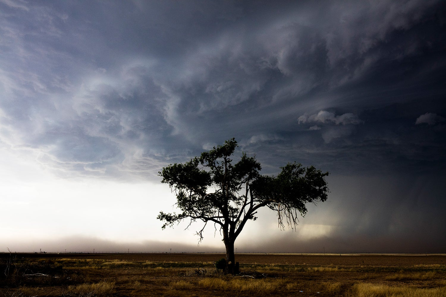 Image of Storm Chasers // Krystle Wright