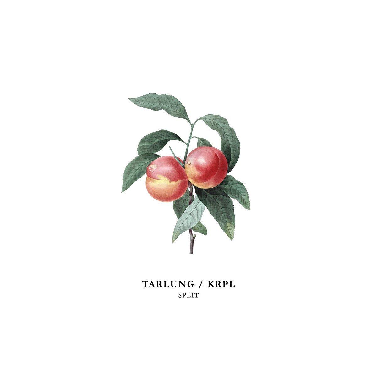 Image of TARLUNG / KRPL - Split EP