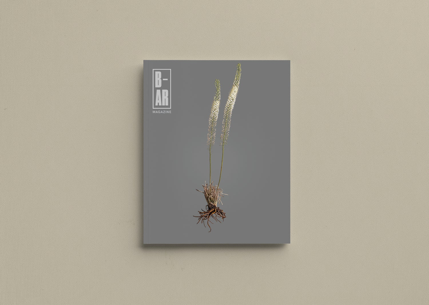 Image of Issue 07: Rooting