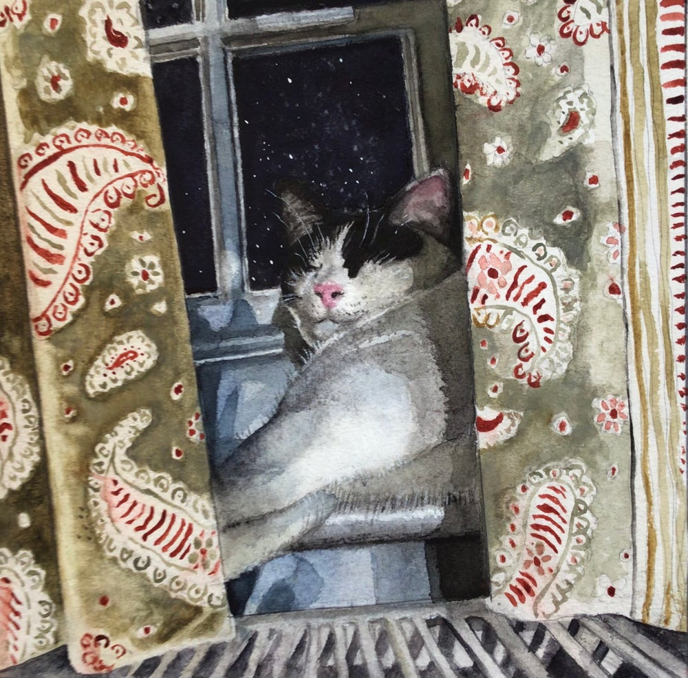 Image of 'Snug!'