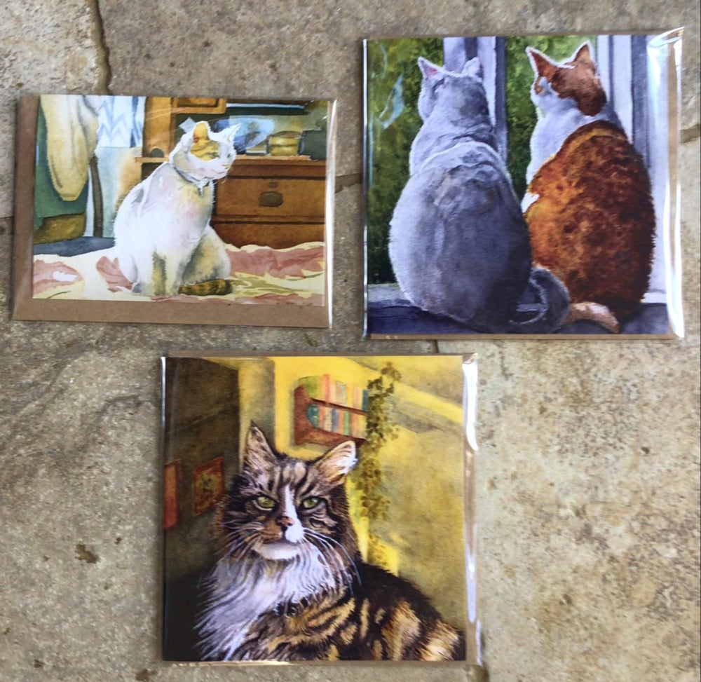 Image of More Cats, Cats, Cats!