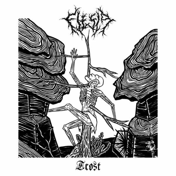 "Image of FLESIA ""Trost"" LP"