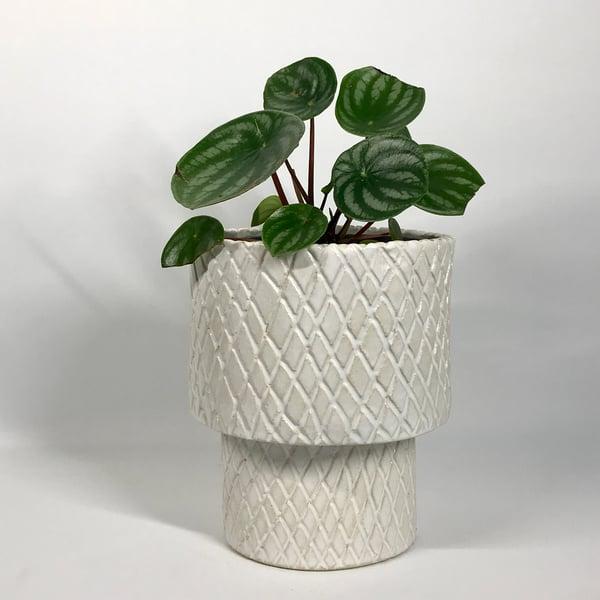 Image of Crosshatched Jardiniere Cachepot