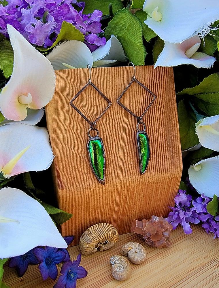 Image of Jewel Beetle Elytra Earrings #2