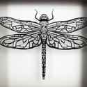 Dragonfly framed papercut