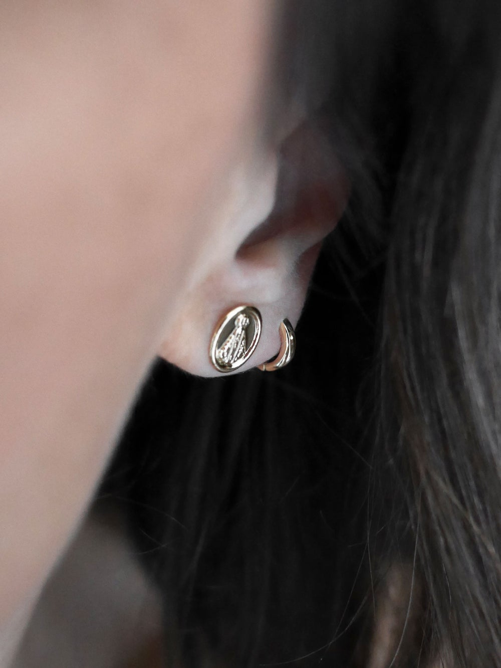 Image of Puce oreille Madone
