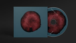 """Image of NO GOD ONLY TEETH """"placenta"""" CD"""