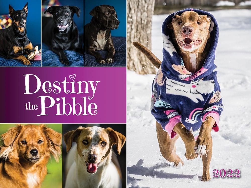 Image of Destiny the Pibble 2022 Calendar